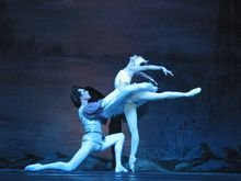 天鹅湖芭蕾舞教学视频