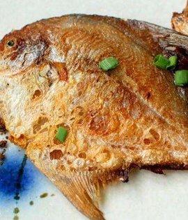 香煎香菇牛蹄筋汤平鱼图片