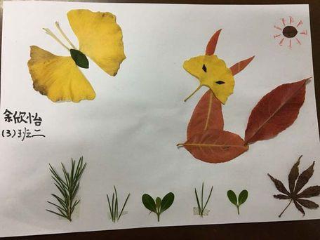 构思奇特的作品:孔雀开屏,日出美景,可爱的动物,温馨的小家……一幅幅