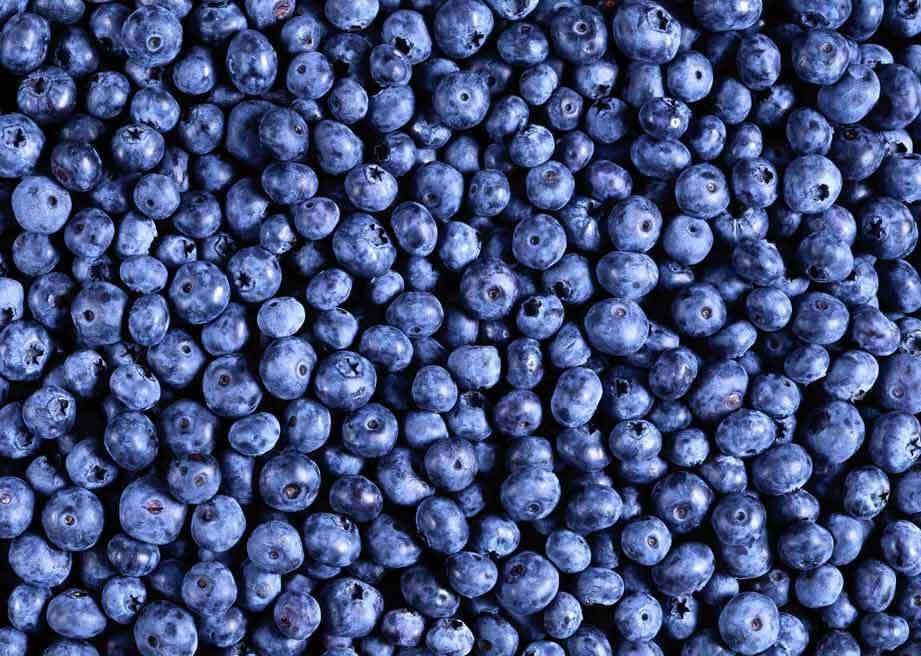 星空专属印章素材蓝莓