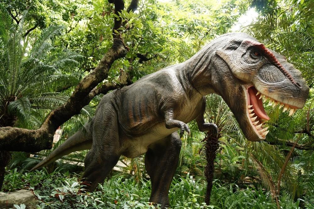 壁纸 动物 恐龙 灵长目 1000_665