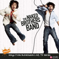 the naked brothers band