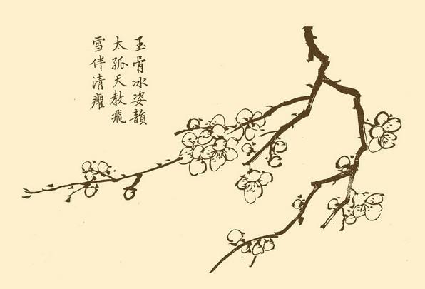彩铅梅花的画法步骤图