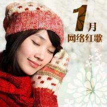 1月网络红歌4