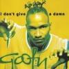 i don't give a damn