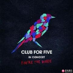 in concert - you're the voice