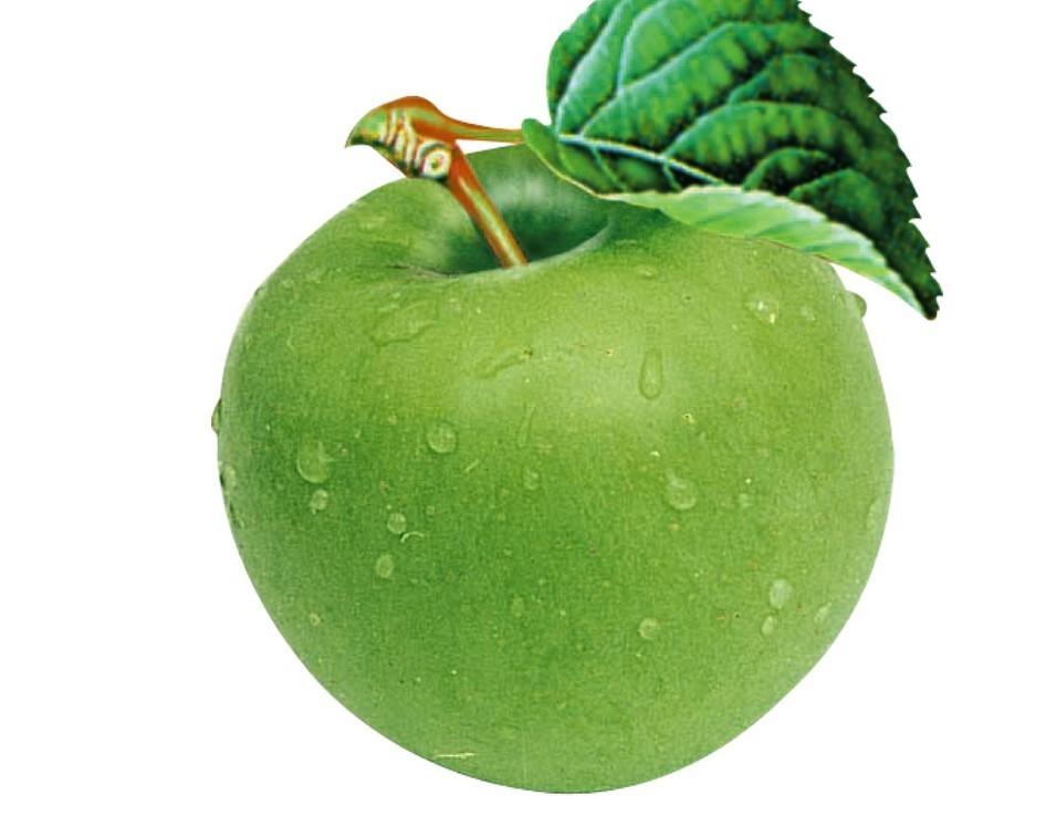 苹果7p表面结构图