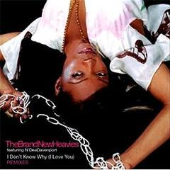 i don't know why (i love you): the remixes